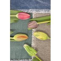 Quality Tulip for sale