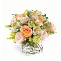 Wonders Pastel Flower Bouquet