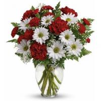 Buy cheap Bouquet Of Daisies from wholesalers