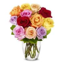 Buy cheap Rainbow Roses Delivery from wholesalers