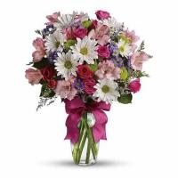 Buy cheap Pretty Please Daisy Bouquet from wholesalers