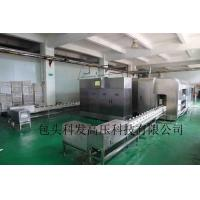 China high pressure processing equipment on sale