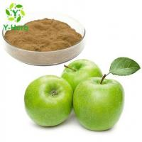 Quality Unripe Green Apple Extract for sale