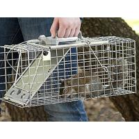 China Squirrel Cage Trap on sale